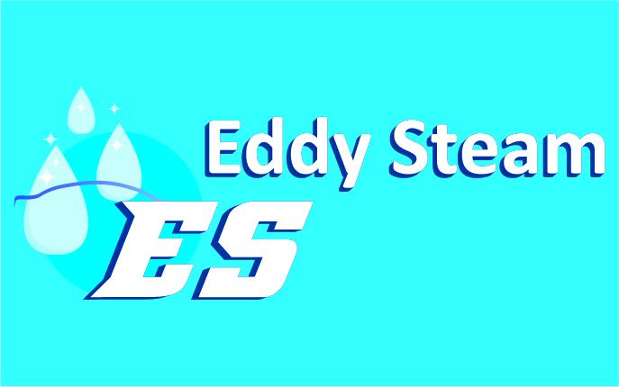 Referenzen Unternehmungsberatung: Das Logo von Eddy Steam ist zu sehen.